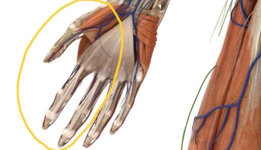 【症例】手~腕のシビレ(ダブルクラッシュ症候群)